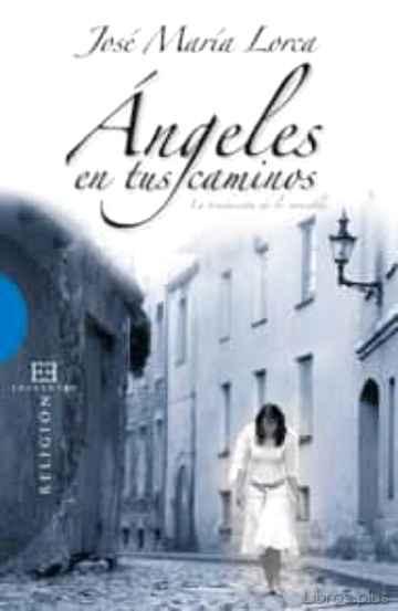 ANGELES EN TUS CAMINOS: LA TRADUCCION DE LO INVISIBLE libro online