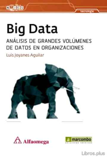 Descargar gratis ebook BIG DATA en epub