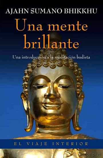Descargar gratis ebook (PE) UNA MENTE BRILLANTE en epub